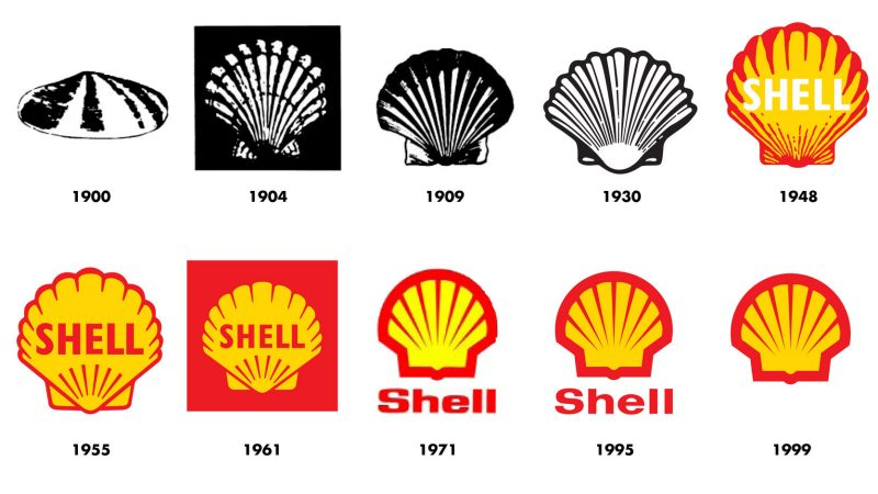 history-of-the-pecten-graphic.jpeg