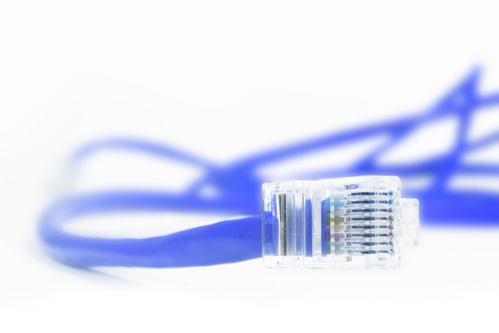 blue network cable over a white background.jpeg